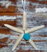 Natural Starfish Christmas Ornament-201