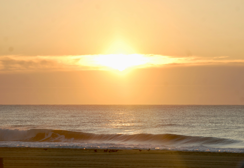 Malibu's Surf Shop | Surf Report | Ocean City, MD Surf